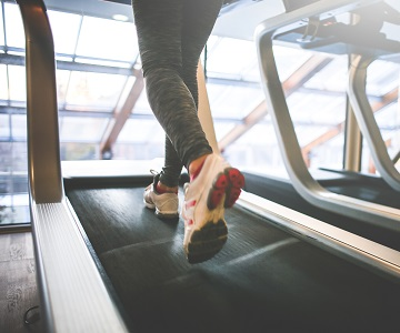 treadmill and fitness equipments on rent